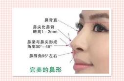 耳软骨垫鼻尖多久自然 鼻子自然定型至少需要一周