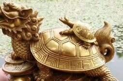 龙龟适合什么生肖人戴