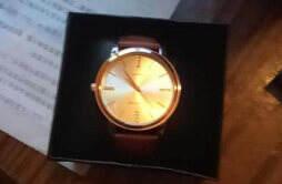 丹弗士手表是什么档次 主打性价比的手表品牌