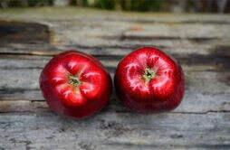 苹果减肥法可以换成其他水果吗 苹果减肥后的饮食要点