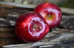苹果减肥法减的是脂肪吗 苹果减肥法是健康的减肥方法吗