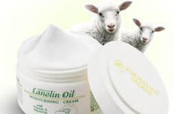 绵羊油可以当身体乳用吗 涂抹绵羊油会不会很油
